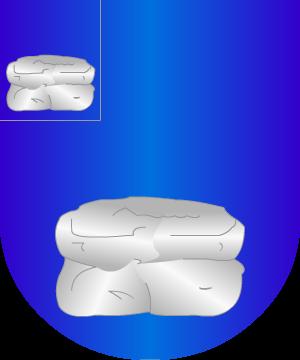 Corujo2